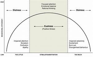 What Is Eustress And How Is It Different Than Stress