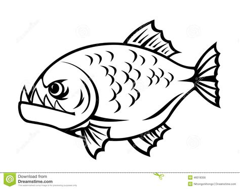 angry piranha stock vector image  killer cartoon