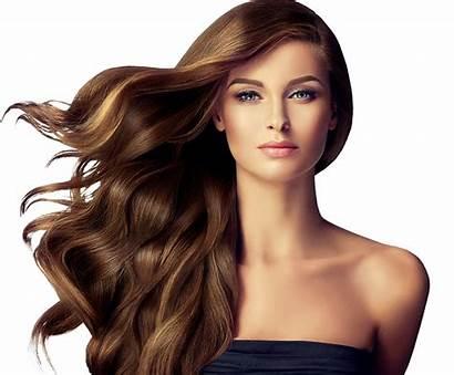 Hairstyle Transparent Salon Brown Woman Haircut Female