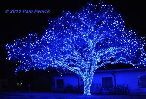 spectacular lighted trees bring in johnson