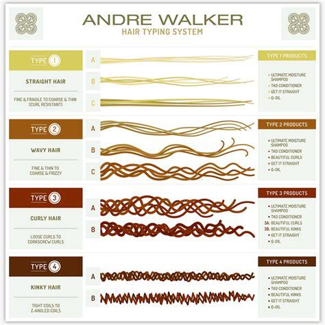 All Hair Types by Textures De Cheveux Afro Reconna 238 Tre Type De Cheveu