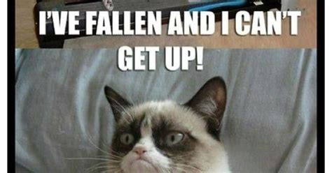 Help I Ve Fallen Meme - i ve fallen and i can t get up fun stuff pinterest memes and humor