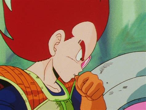How Do You Say He Has Brown Hair In by Do You Find That Vegeta Has Brown Hair In His