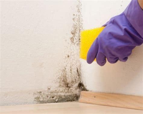 schimmel schlafzimmer entfernen schimmel im schlafzimmer vorbeugen und sicher entfernen