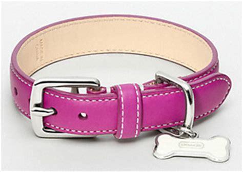 designer accessories   posh pet