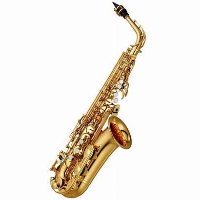 Saxophone Instruments Musique Famille Leur Familles