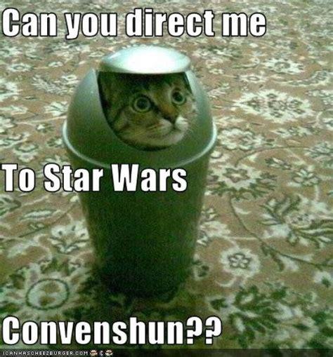 Star Wars Cat Meme - star wars cats 28 pics