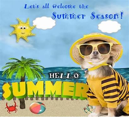 Summer Welcome Season Happy Let Card Greetings