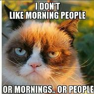 I Hate Morning People Grumpy Cat
