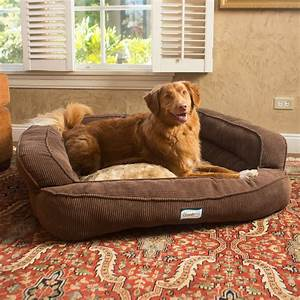 Memory foam dog bed extra large orthopedic dog beds for X large dog beds