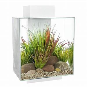 Aquarium Set Led : fluval edge led aquarium set 46l color white aquarium line ~ Watch28wear.com Haus und Dekorationen