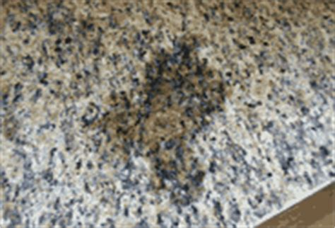 removing an olive stain on unsealed granite