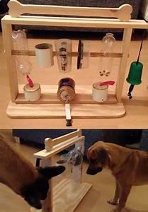 Hunde Intelligenzspielzeug Selber Machen : pin von nicole dabrunz auf basteln werkeln hunde hundespielzeug und hunde sachen ~ A.2002-acura-tl-radio.info Haus und Dekorationen