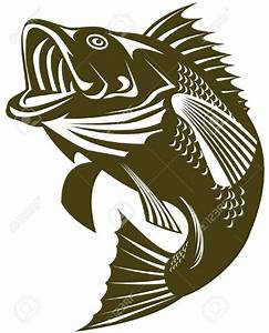 Largemouth Bass Cliparts Stock Vector And Royalty Free