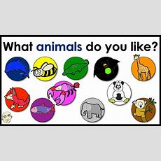 What Animals Do You Like?  Name Of Animals  Colors  Easy English Conversation Practice Esl