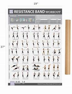 Resistance Band Exercise Poster - Laminated