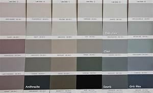 nuancier peinture grise meilleures images d39inspiration With couleur gris taupe nuancier