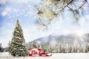 Snowy, Outdoor, Christmas, Tree, Scene, In, Mountains, Stock, Photo, -, Download, Image, Now