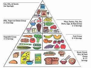Childhood Education: What to Eat During Pregnancy for ...