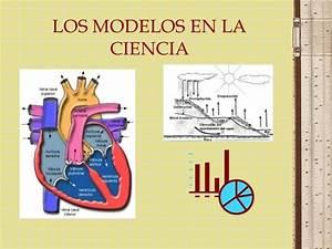 Modelos En La Ciencia