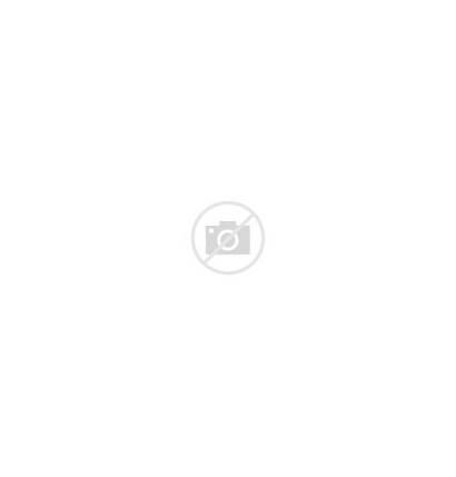 Sunglasses Laurent Saint Gold Frame Titanium Tone