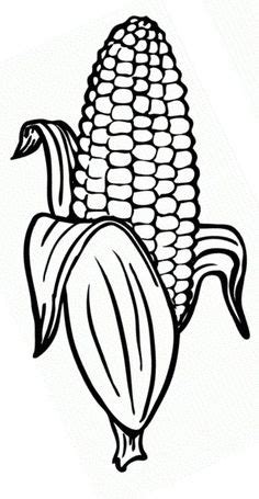 corn outline corn  coloring page coloring home  year