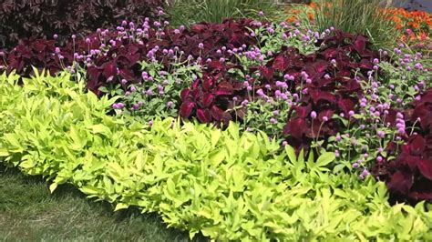 How To Design A Flower Garden Step By Step garden landscape how to design a garden
