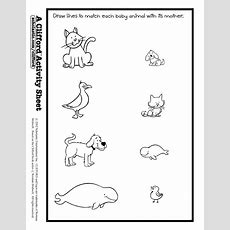 Baby Animals Match Activity Sheet  Animals Theme Misc Ideas  Animal Worksheets, Worksheets