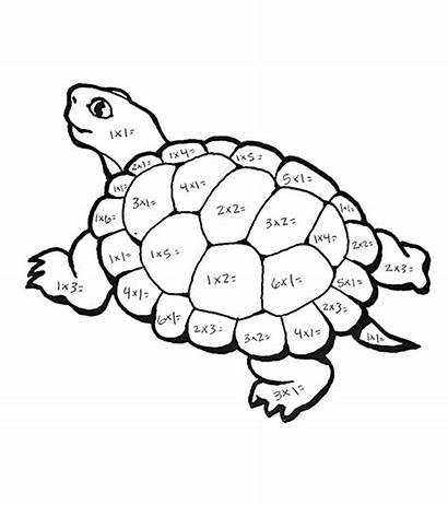 Multiplication Coloring Sheets Printable Turtle
