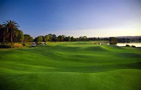 images golf nature lawn
