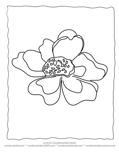 Single Flower Coloring Pages at GetColorings.com   Free printable colorings pages to print and color