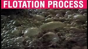 Flotation Process