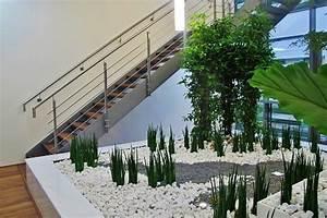 Pflanzen Für Flur : xxl gro pflanzen innenraumbegr nung eingang treppenhaus flur pflanzen gro gef e planen kaufen ~ Bigdaddyawards.com Haus und Dekorationen