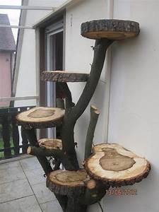 Kratzbaum Selber Machen : kratzbaum selbst bauen stunning auch im hauptbaum wurden weitere elemente eingebaut with ~ Orissabook.com Haus und Dekorationen