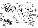 Coloring Underwater Pages Quality Themed sketch template
