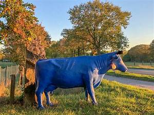 Blaue Kuh Magdeburg : wenn shopping zum einkaufserlebnis wird hofladen ~ Watch28wear.com Haus und Dekorationen