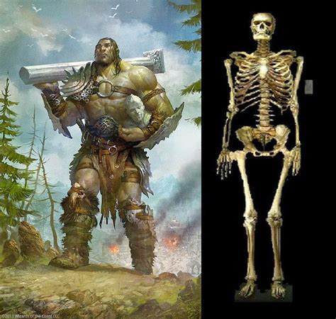THE ANCIENT GIANTS WHO RULED THE EARTH | Mysterious Earth