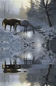 Pferde Gifs Bilder Pferde Bilder Pferde Animationen