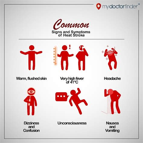 9 Signs And Symptoms Of Heat Stroke  My Doctor Finder. T Shirt Signs Of Stroke. Belong Together Signs Of Stroke. Ct Mri Signs Of Stroke. Caregiver Signs. Itchy Feet Signs. Delirium Signs. Youtuber Signs Of Stroke. Acne Signs Of Stroke