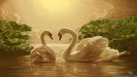 Beautiful Love Wallpaper Hd