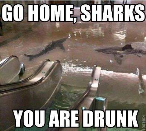Go Home You Re Drunk Meme - 33 of the best quot go home you re drunk memes quot page 26 of 34