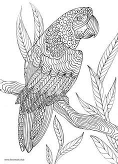 birds and giraffes coloring pages animal coloring pages for adults giraffe free 5947