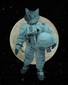 cat astronaut luciusart astronaut space cat wood block print