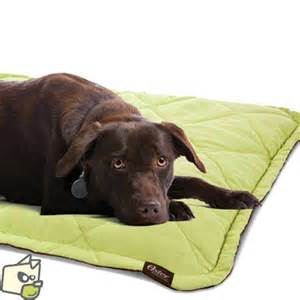 Tapis Anti Acarien Chien by Couchage Tapis Chauffant Pour Animal