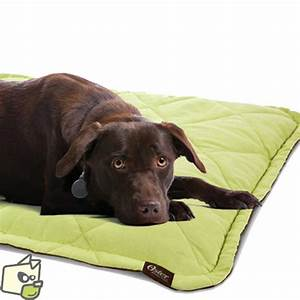 couchage tapis chauffant pour animal With tapis pour chien lavable