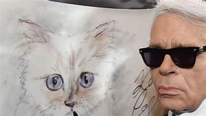 Choupette Chat Karl : brigitte bardot crit choupette le chat de karl lagerfeld l 39 express styles ~ Medecine-chirurgie-esthetiques.com Avis de Voitures