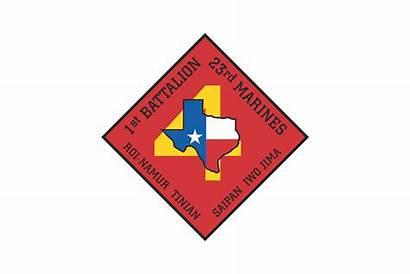 23rd Battalion Marine Regiment 1st Usmcr Cdr