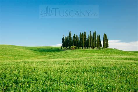 Val Dorcia Tuscany Dorcia Valley In Tuscany Italy