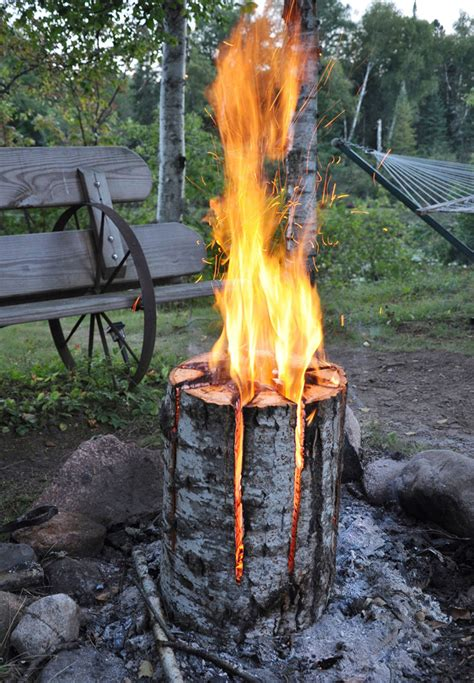 long burning bonfire log