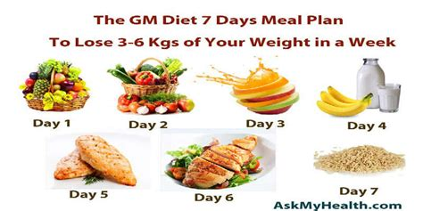 rapid weight loss diet body care